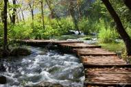 8103856-wooden-foot-bridge-across-the-stream-in-mountain-forest-croatia